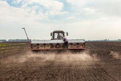 Récolte de soja Photo stock
