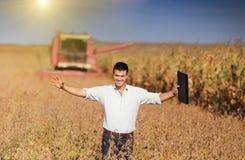 Récolte de soja photographie stock