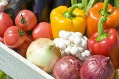 Récolte des légumes Images libres de droits