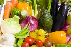 Récolte des légumes Photos stock