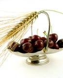 Récolte fraîche Images stock