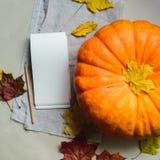 Récolte fraîche de potiron orange Images libres de droits