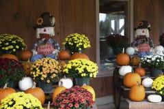 Récolte heureuse avec des fleurs et des potirons horizontaux images stock