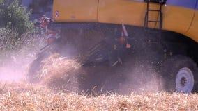 Récoltes agricoles de machine de blé clips vidéos