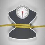 Réduction de la taille et du poids Photographie stock libre de droits