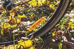 Réflecteurs oranges sur des rais de jour d'automne de bicyclette image stock