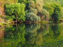 Réflexe de rivière photographie stock libre de droits
