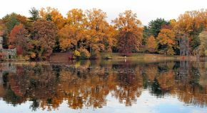 Réflexion 13 d'automne photos libres de droits