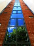 Réflexion architecturale d'arbre Photographie stock libre de droits