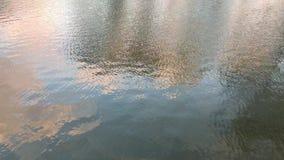 Réflexion au lac dans la nature banque de vidéos