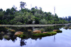 Réflexion chez Luangan Lalak Image libre de droits
