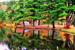 Réflexion colorée des arbres sur l'eau Image libre de droits