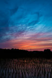 Réflexion crépusculaire de ciel Photographie stock
