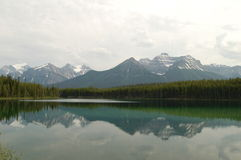 Réflexion d'Alberta Image libre de droits