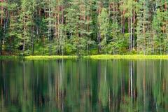 Réflexion d'arbre dans le lac Images stock