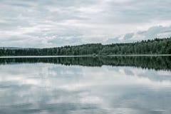 Réflexion d'arbre dans le lac paisible photo libre de droits