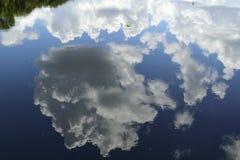 Réflexion d'arbre et de nuages Image stock