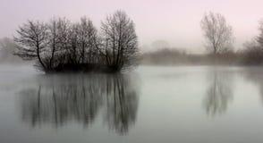 Réflexion d'arbre sur le lac Images libres de droits