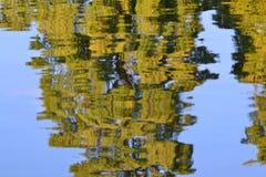 réflexion d'arbres Photographie stock