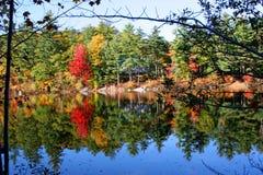 Réflexion d'automne Images libres de droits