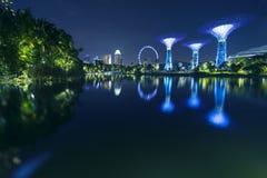 Réflexion d'insecte et de Supertrees de Singapour Images libres de droits