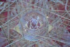Réflexion d'oeil en verre Photographie stock libre de droits