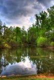 Réflexion d'un étang Image stock