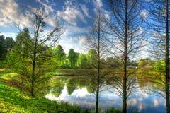 Réflexion d'un étang Images stock