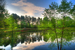 Réflexion d'un étang Photo stock
