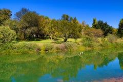 Réflexion d'un champ vert sur un lac bleu Photo libre de droits