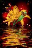 Réflexion d'une belle fleur de lotus avec des papillons Photos stock