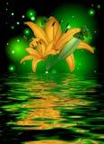 Réflexion d'une belle fleur de lotus avec des papillons Image stock