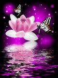 Réflexion d'une belle fleur de lotus avec des papillons Photographie stock libre de droits