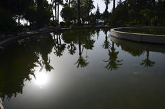 Réflexion dans l'eau Image libre de droits