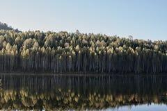 Réflexion dans le lac Photo stock