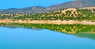 Réflexion dans le lac Coghinas Images stock