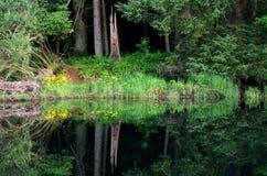 Réflexion dans un lac dans le secteur de lac, Angleterre Photo stock