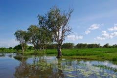 réflexion de 2 lagunes image stock