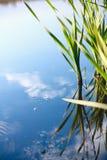 Réflexion de ciel dans l'eau Images stock