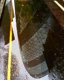 Réflexion de cornichon Photographie stock