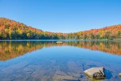 Réflexion de feuillage d'automne sur un étang peu profond Photo libre de droits