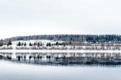 Réflexion de forêt en rivière Photo libre de droits
