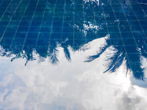 Réflexion de l'eau de ciel bleu et de feuilles Image libre de droits