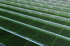 réflexion de l'illustration 3D des nuages sur les cellules photovoltaïques Panneaux solaires bleus sur l'herbe Alternative de con illustration libre de droits