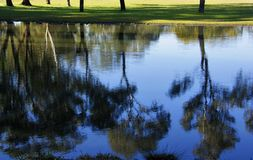 Réflexion de lac Images libres de droits