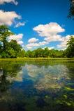 Réflexion de lac Photo stock