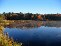 Réflexion de lac autumn Image stock
