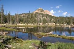 Réflexion de lac dans les hautes montagnes d'Uinta Images stock
