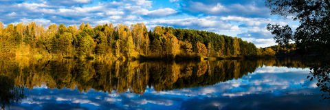 Réflexion de lac de forêt d'automne Images libres de droits