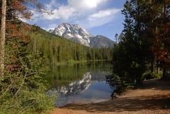 Réflexion de lac leigh Images stock